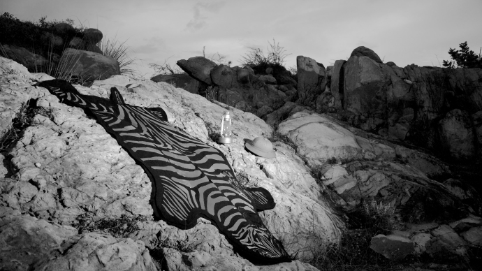 zebra rug mood (1)