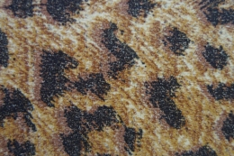Cheetah Swatch